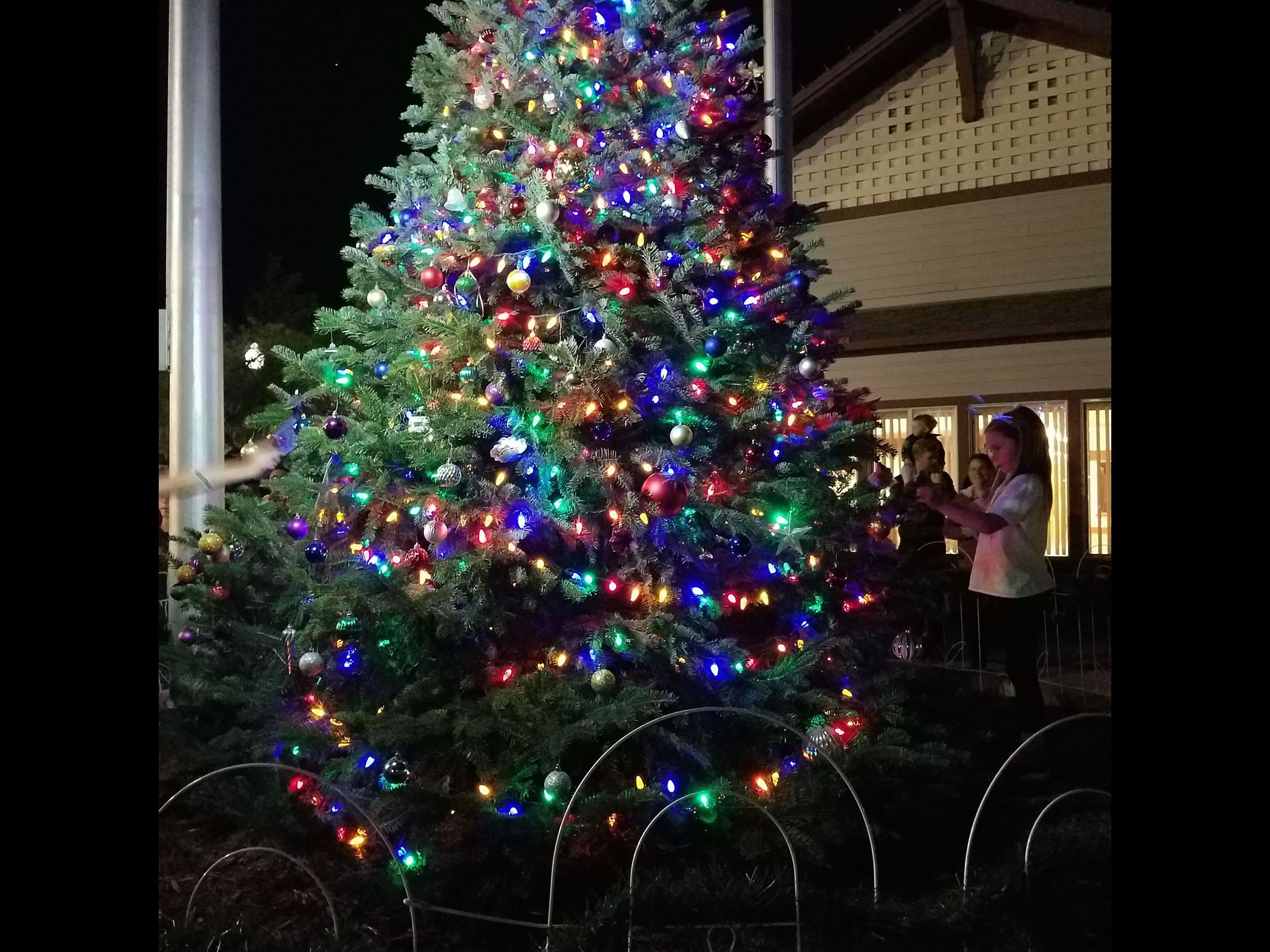 Tree Lighting 1
